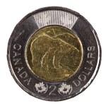 Ottawa, Canada, Avril 13, 2013, A brand new shiny 2012 Canadian two dollars — Stock Photo