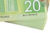 Ottawa, canadá, avril 13, 2013, el detalle de billetes de 20 dólares del polímero nuevo — Foto de Stock