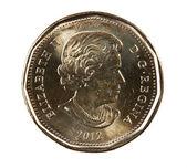 Ottawa, Canada, Avril 13, 2013, A brand new shiny 2012 Canadian dollar — Stock Photo