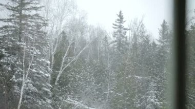 Snowstorm View by the Window — Video Stock