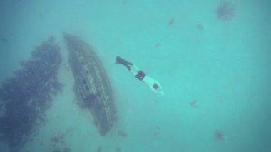 Volný potápěč plavání hluboko pod vodou — Stock video