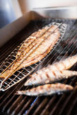 Fish on the grill — Stok fotoğraf