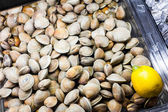 Clams in the Fish Counter of a Restaurant — Stock Photo