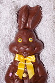 Details of a Big Chocolate Bunny — 图库照片
