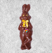 Details of a Big Chocolate Bunny — Стоковое фото