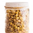 Sprouting Lentils Growing in a Glass Jar — Stock Photo