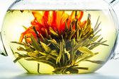 Herbata kwiat w jasne, czajnik — Zdjęcie stockowe