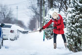 Woman Shoveling her Parking Lot — Stock fotografie