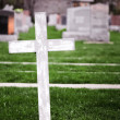 White Cross in a Old Cemetery — Stock Photo #47153641