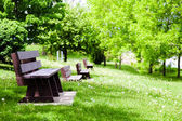 Row of empty Benches in Nature — Stock Photo