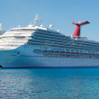 Carnival Triumph in Port — Stock Photo #22248553