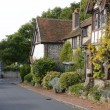 Stock Photo: Rottingdein East Sussex. England