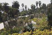 Garden by port in Barcelona. Spain — Stock Photo