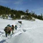 schneebedeckten Pfad zu der erodierte an sonnigen Tag — Stockfoto