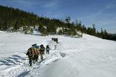 白雪皑皑的路径上阳光灿烂的日子 aladaglar — 图库照片