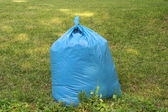 Garbage in plastic bag on grass — Stock Photo