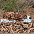 Stock Photo: Loading timbers