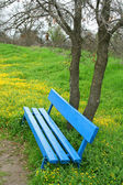 Wooden park bench at a park — Stock Photo