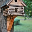 Lodge for birds — Stock Photo