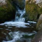 Natural waterfall — Stock Photo #29802491