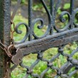 Old rusty lock on gate — Stock Photo #30559099
