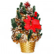 Christmas bouquet from cones and fir-tree branches — Stock Photo