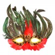 Mask of a bird for holidays and carnivals — Stock Photo