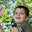 Cute little boy waving an American flag - Stock Photo