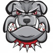 Angry bulldog head — Stock Vector #22819896
