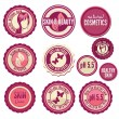 Stock Vector: Collection of cosmetics labels and badges