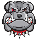 Angry bulldog head — Stock Vector