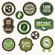Set of organic and farm fresh food badges and labels — Stock Vector #23129684