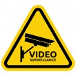 Video surveillance sign — Stock Vector #27428323