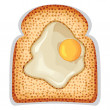 Stock Vector: Fried egg sunny side up of crusty toast