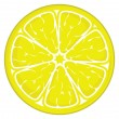 Slice of lemon isolated on white background — Stock Vector