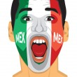 Mexico fan face — Stock Vector