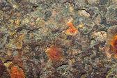 Rusty textuur — Stockfoto
