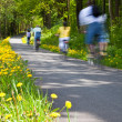 Rear view of mature couple cycling through park — Stock Photo #39801865
