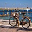 Old bycicle - Stockfoto