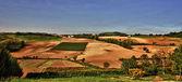 Monferrato hills — Stock Photo