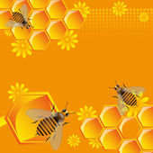 Bees and honeycomb cells — Stock Vector