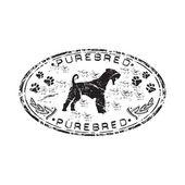 Purebred grunge rubber stamp — Stock Vector