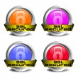 SSL secured icons — Stock Vector #41103685