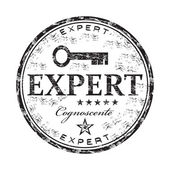 Expert grunge rubber stamp — Stock Vector