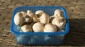 Fresh raw mushrooms — Stockfoto