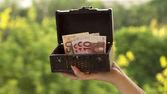 Una piccola cassa con i soldi — Foto Stock