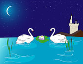 Swans in the lake after midnight — Stock Vector