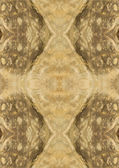 Background symmetrical image brown — Stock Photo