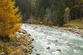 Podzimní krajina s horská řeka — Stock fotografie