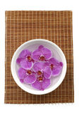 Orchid in bowl — Stock Photo